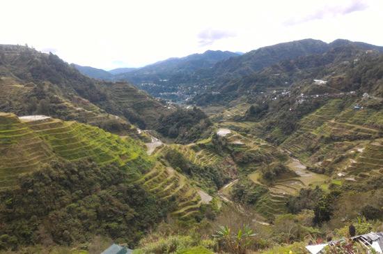 banaue rice terraces view point