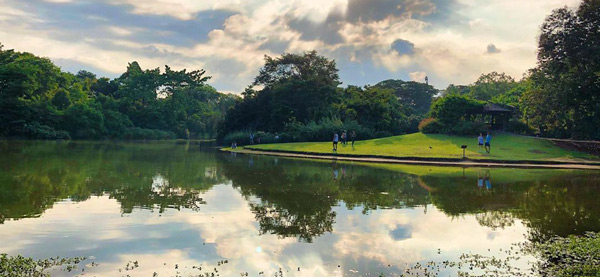 singapore botanic gardens things to do in asia