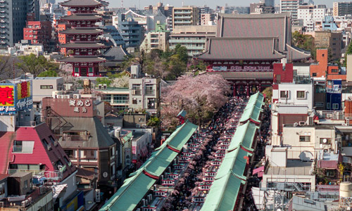 What to do in Tokyo Must-see tourist spots